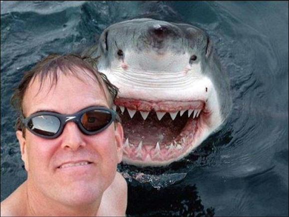 funny-baseball-selfie-14-free-wallpaper